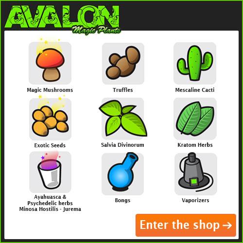 Ayahuasca web shop